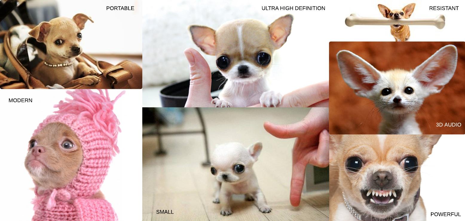 Chihuahua VR box